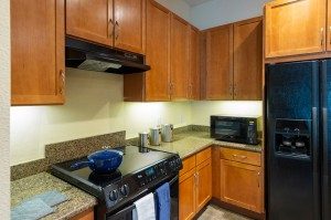 One Bedroom Apartments in Houston, Texas - Model Kitchen (4)